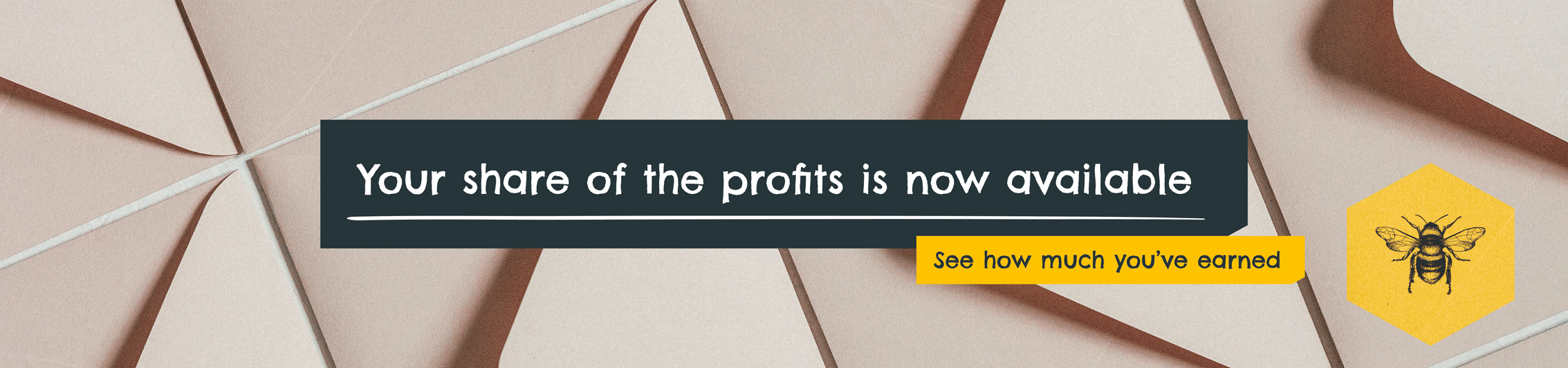 Share of the Profits